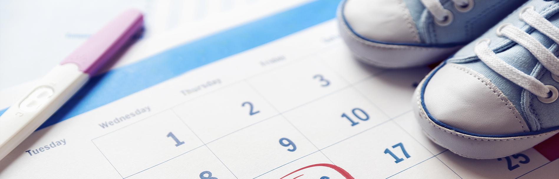 Guia da gravidez: Como contar em semanas?